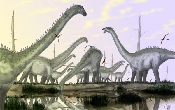 Sauropoda. Bron: Mark Witton