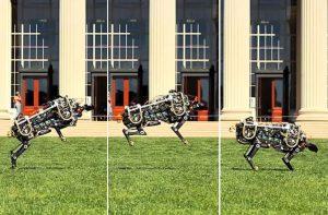 De cheeta-robot is in staat kleine sprongen te maken. Bron: MIT