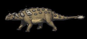 Een tekening van de Ankylosaurus magniventris, een van de Ankylosaurus-soorten.  Bron: Wikimedia Commons/ Emily Willoughby
