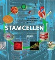 stamcellen-mummery