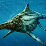 Ichthyosauriër. Bron: Tod Marshall