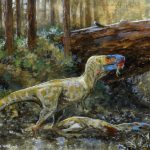 Een Daspletosaurus doet zich tegoed aan een soortgenoot. Credit: Tuomas Koivurinne