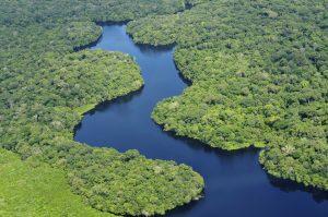 Het Amazonegebied was vroeger misschien veel bewoonder dan nu. Foto: Neil Palmer