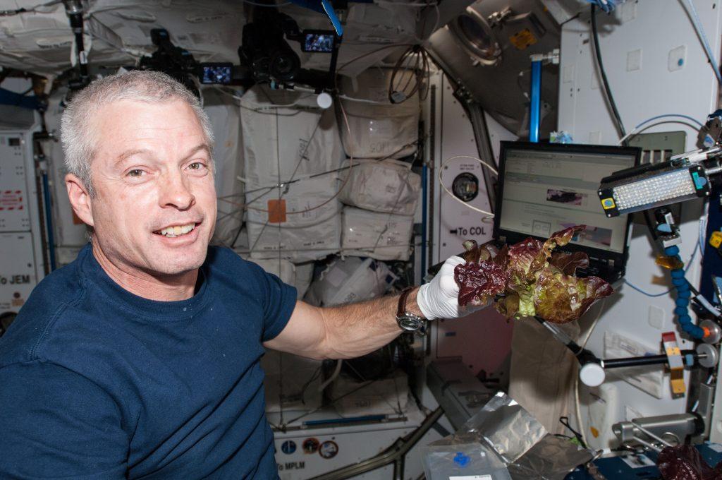 Astronaut Steve Swanson oogsts ruimtesla in juni 2014