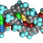 Hoe avontuurlijk is jouw DNA? Kom erachter op Lowlands!