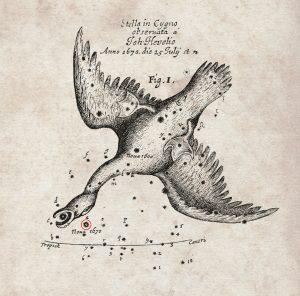 De nova sub capite Cygni - een ster onder het hoofd van de zwaan, getekend door astronoom Hevelius in 1670. Afbeelding, Royal Society