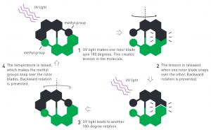 De moleculaire motor van Ben Feringa werkt schematisch op deze manier. Beeld: Johan Jarnestad/The Royal Swedish Academy of Sciences