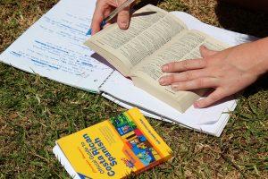 Vertalingen opschrijven en stampen - dat is volgens Gabriel Wyner juist niet hoe het moet! Foto: The leaf project/via Flickr