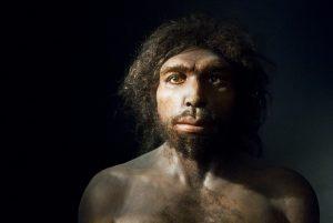 Homo-antecessor-facial-reconstruction
