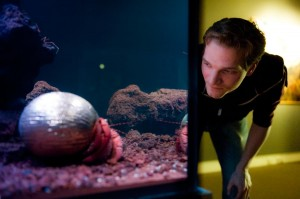 Bioloog Pepijn Kamminga bekijkt een 'voorstelling' van een heremietkreeft die in een Japans toneelmasker woont. Foto: Maarten Fleskens