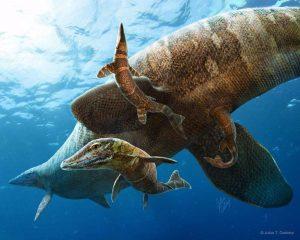 De vondst ondersteunt het idee dat de jongen op open zee geboren werden. Illustratie: Julius T. Csotonyi