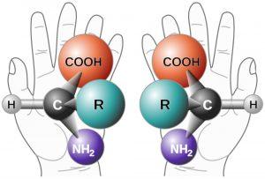 Links- en rechtshandig aminozuur