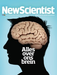NS28_Cover_Brein