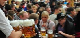 Het Oktoberfest in München. Mede mogelijk gemaakt door de fruitvlieg. Bron: Christian Benseler