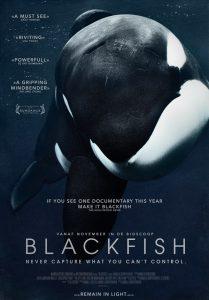Orka Blackfish poster