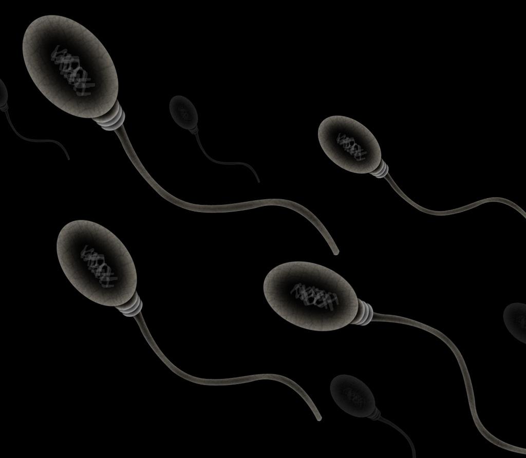 Magnetische spermarobots leveren kankermedicijn af bij baarmoederhalskanker