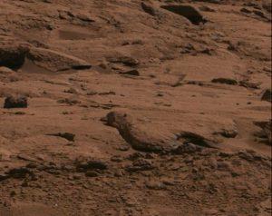 Leuk spelletje: spot de vreemdste Mars-steen. Dit exemplaar heeft de vorm van een vogel. Bron: NASA/JPL-Caltech/MSSS
