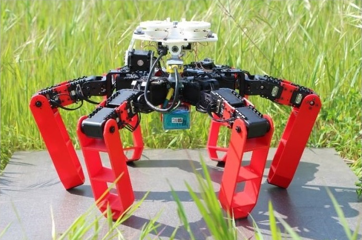antbot