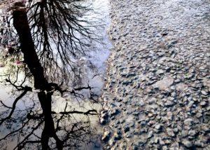 Voor de productie van asfalt wordt in Nederland jaarlijks 400.000 ton bitumen gebruikt. Foto: MJ Klaver