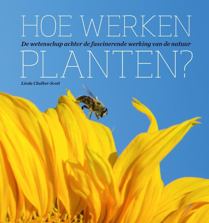 Hoe werken planten