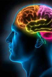 Het bekijken van video's bereidt je brein voor op het doen van taken.