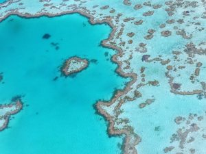 Groot Barrièrerif Australië, foto: pixabay
