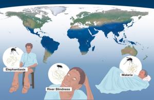 malaria elefantiase rivierblindheid