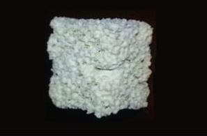 Na verhitting vormt het restafval een een structuur dat lijkt op die van echte botten. Bron: CSIC