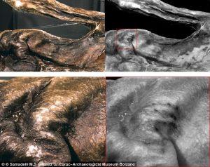 Tatoeages op het lichaam van Ötzi. Klik voor grotere versie.