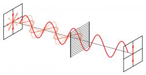 Voor het polarisatie filter trilt het licht in alle richtingen. Na het filter is het licht gepolariseerd in een richting. Beeld: Wikimedia Commons, Fffred