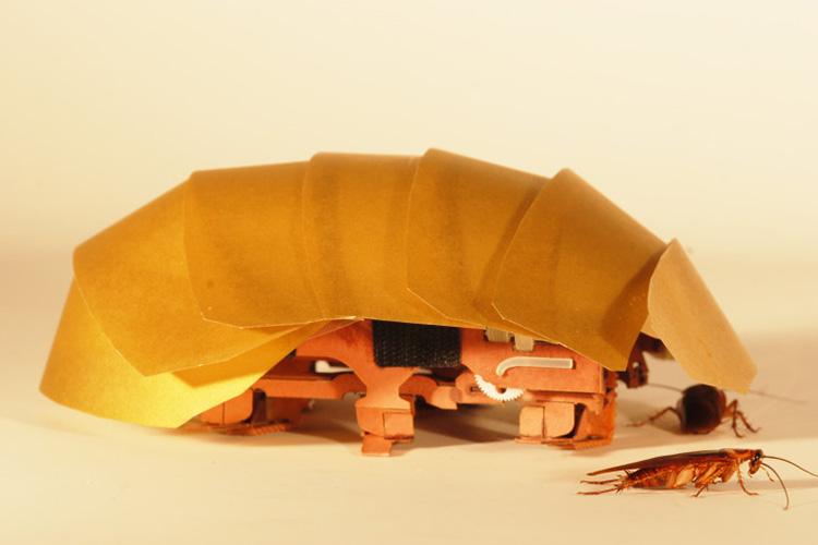 Robot geïnspireerd op kakkerlak
