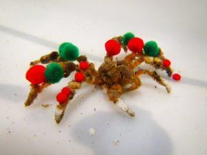 Deze koddige krabben versieren zichzelf alsof ze een kerstboom zijn