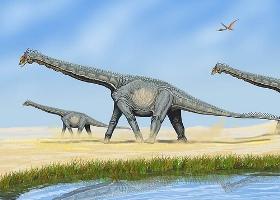 sauropod200