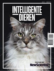 special intelligente dieren