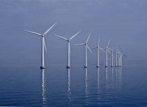 Onder het wateroppervlak zoeken zeehonden vis tussen de turbines van windmolens. Bron: Wikimedia Commons